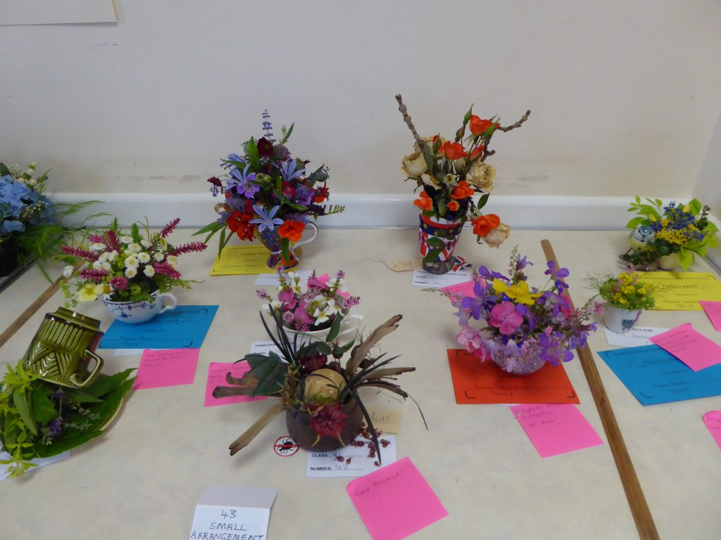 Prize winners at the garden club annual show